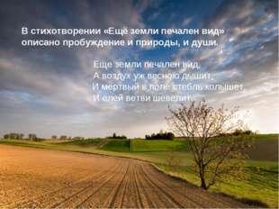 В стихотворении «Ещё земли печален вид» описано пробуждение и природы, и души