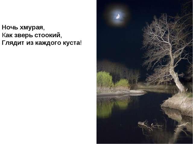 Ночь хмурая, Как зверь стоокий, Глядит из каждого куста!