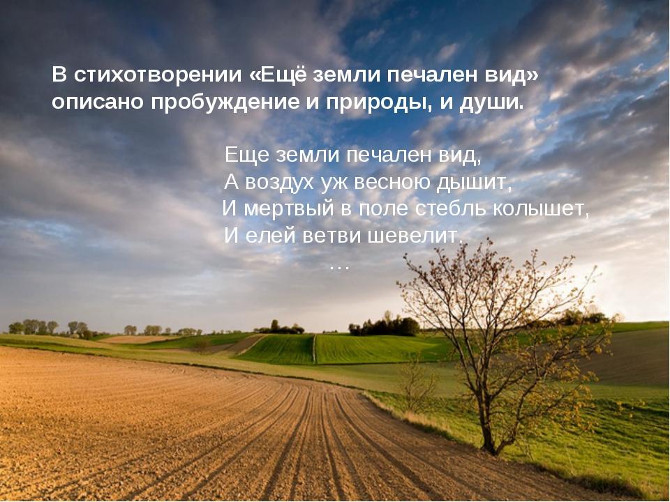 В стихотворении «Ещё земли печален вид» описано пробуждение и природы, и души...