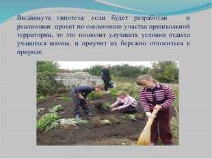 Выдвинута гипотеза: если будет разработан и реализован проект по озеленению у