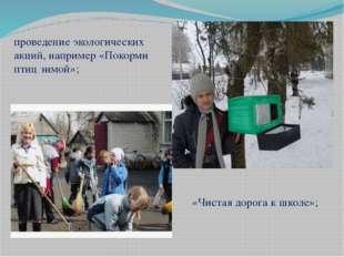 проведение экологических акций, например «Покорми птиц зимой»; «Чистая дорога