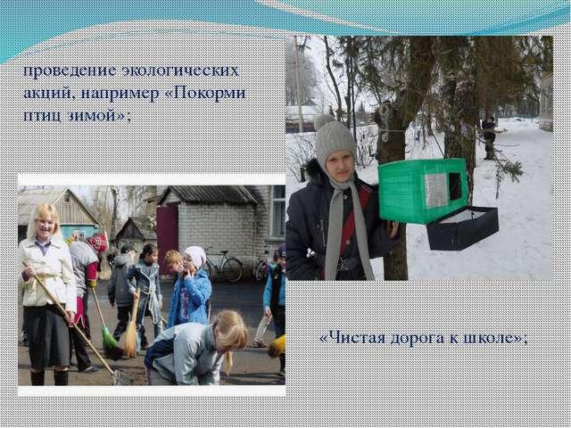 проведение экологических акций, например «Покорми птиц зимой»; «Чистая дорога...