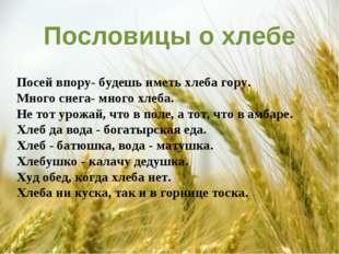 Пословицы о хлебе Посей впору- будешь иметь хлеба гору. Много снега- много х