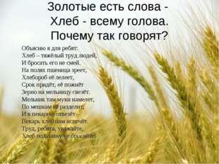 Золотые есть слова - Хлеб - всему голова. Почему так говорят? Объясню я для р