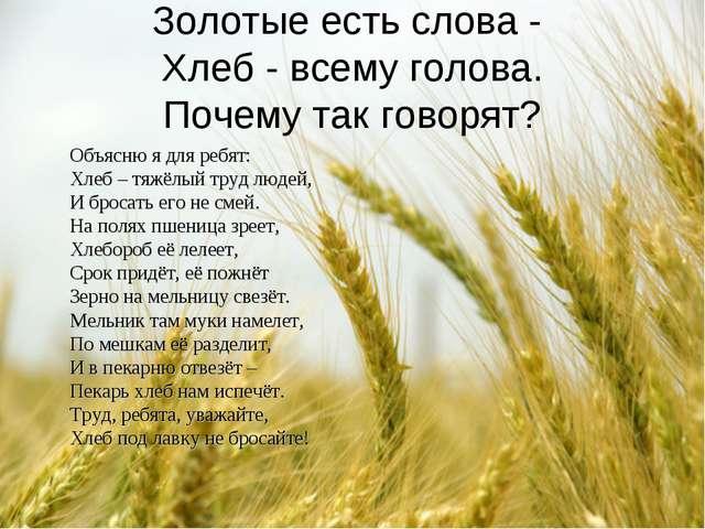 Золотые есть слова - Хлеб - всему голова. Почему так говорят? Объясню я для р...