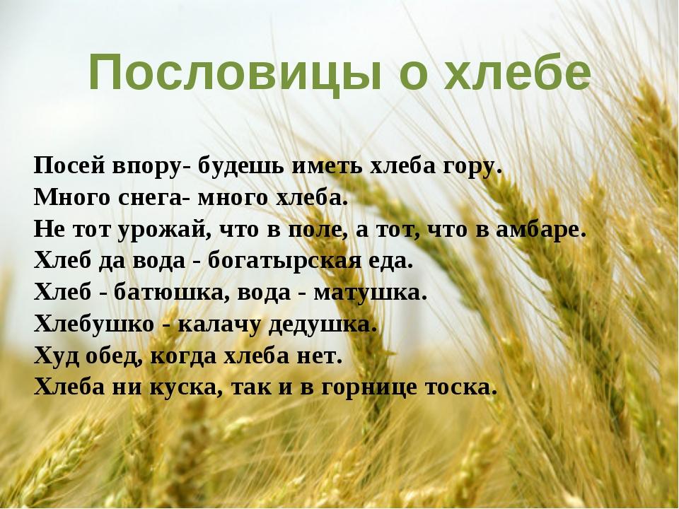 Пословицы о хлебе Посей впору- будешь иметь хлеба гору. Много снега- много х...