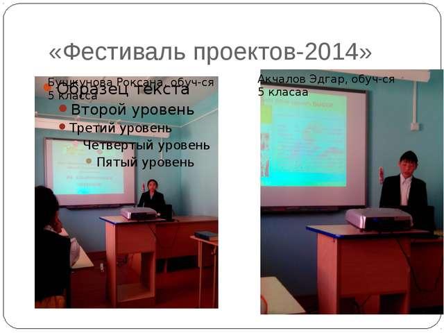 «Фестиваль проектов-2014» Бушкунова Роксана, обуч-ся 5 класса Акчалов Эдгар,...