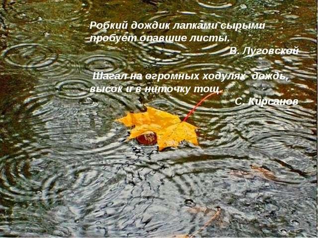 Робкий дождик лапками сырыми пробует опавшие листы. В. Луговской Шагал на огр...