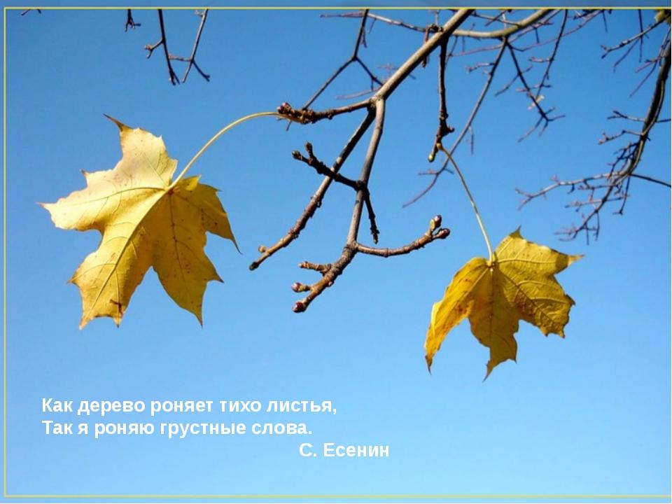 Как дерево роняет тихо листья, Так я роняю грустные слова. С. Есенин