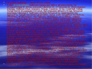 Нұрпейіс Байғанин— халық ақыны, жырау. Қазіргі Ақтөбе облысы Байғанин ауданы