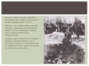 Около 3 миллионов евреев – половина вех жертв Холокоста – были гражданами ССС