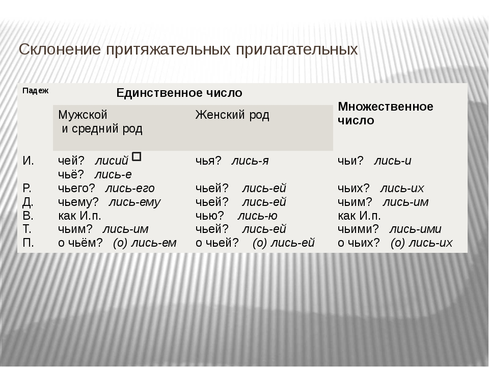 Склонение притяжательных прилагательных Падеж Единственноечисло Множественное...