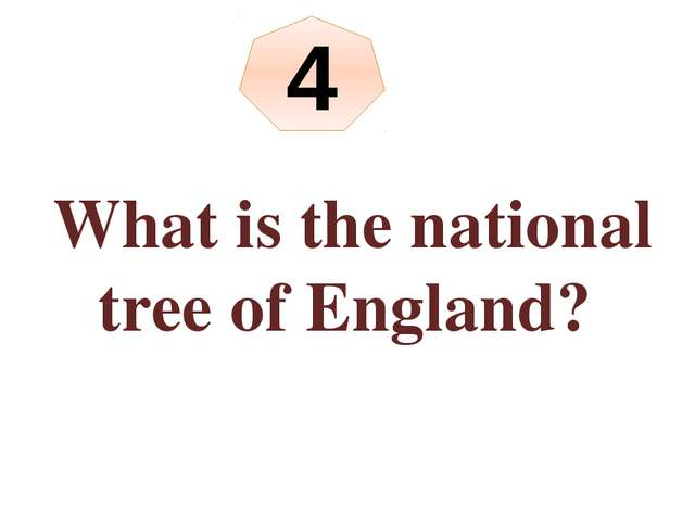 What is the national tree of England? 4