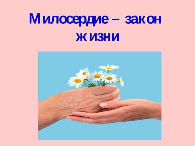 Милосердие – закон жизни