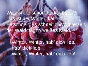 Was ist die schönste Jahreszeit? Das ist der Winter, kalt. Es schneit, es sch