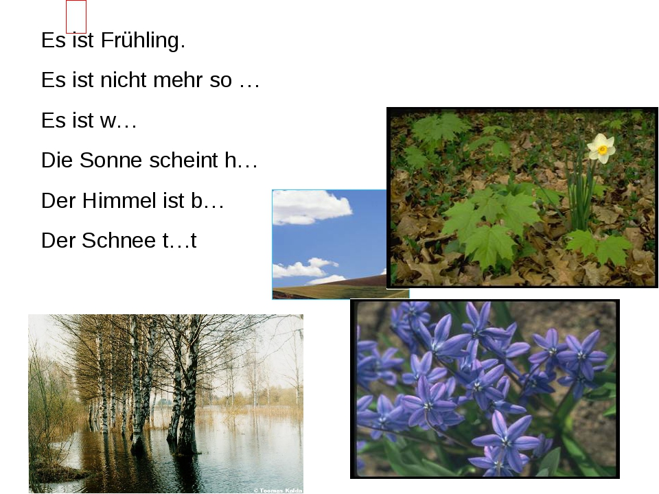 Es ist Frühling. Es ist nicht mehr so … Es ist w… Die Sonne scheint h… Der Hi...