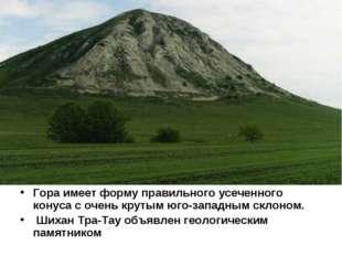 Гора имеет форму правильного усеченного конуса с очень крутым юго-западным ск