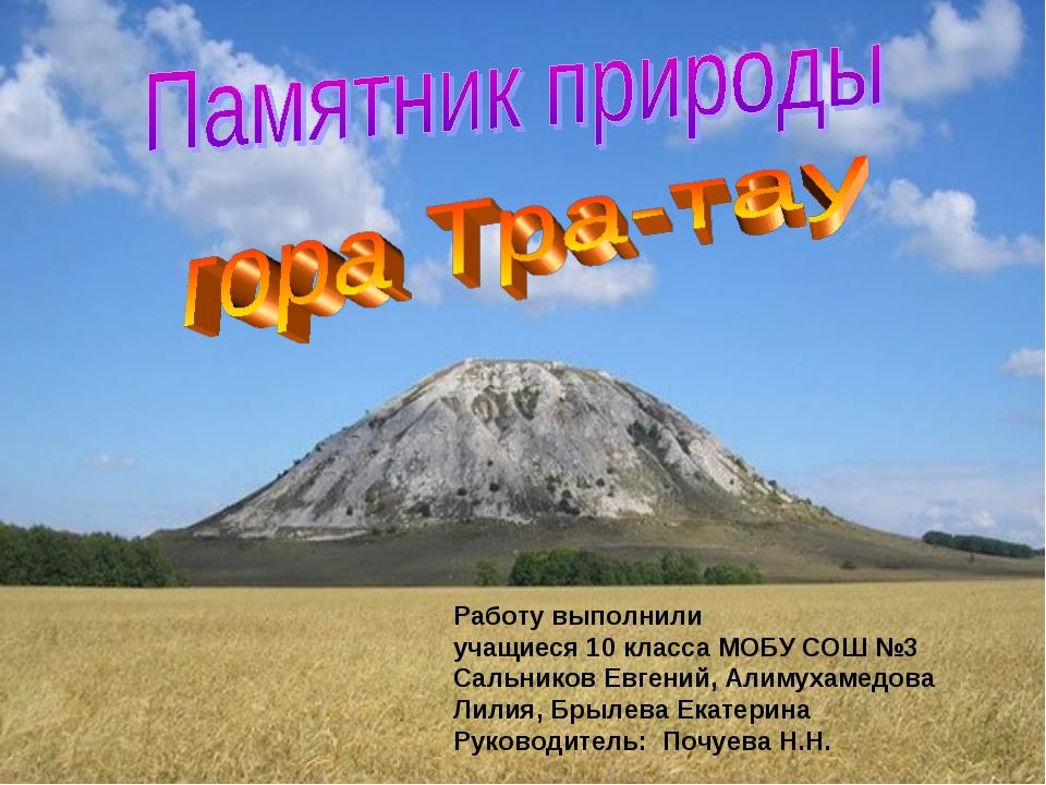 Работу выполнили учащиеся 10 класса МОБУ СОШ №3 Сальников Евгений, Алимухамед...