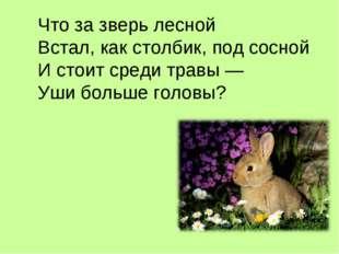 Что за зверь лесной Встал, как столбик, под сосной И стоит среди травы — Уши