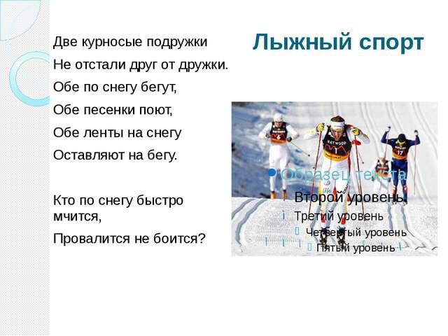 Лыжный спорт Две курносые подружки Не отстали друг от дружки. Обе по снегу бе...