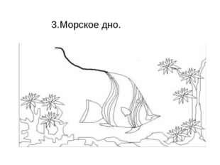 3.Морское дно.