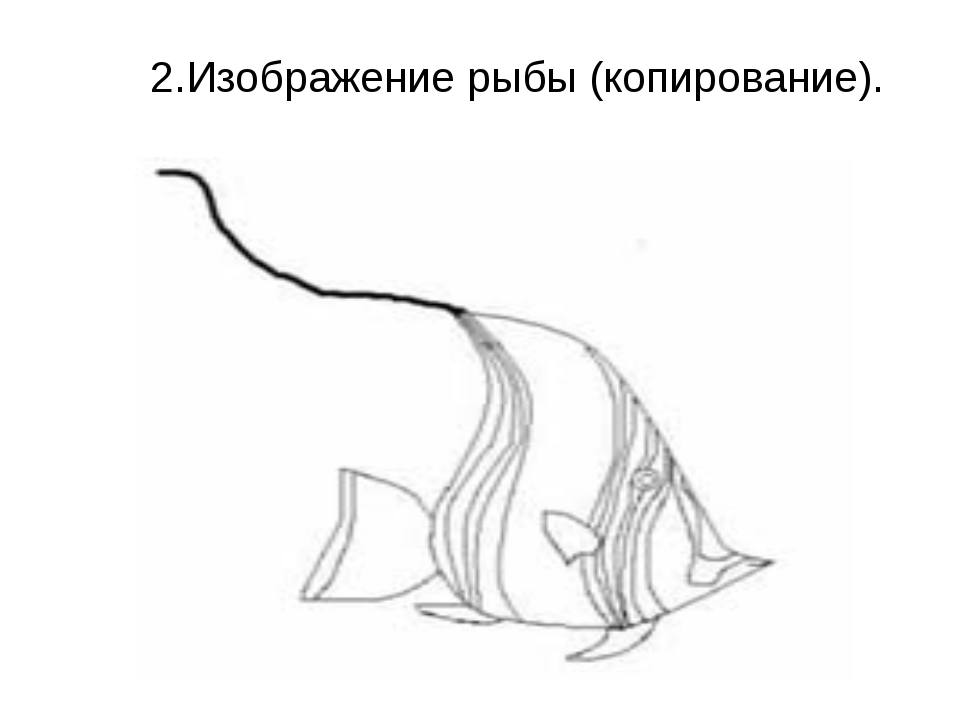 2.Изображение рыбы (копирование).