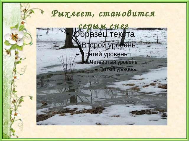 Рыхлеет, становится серым снег