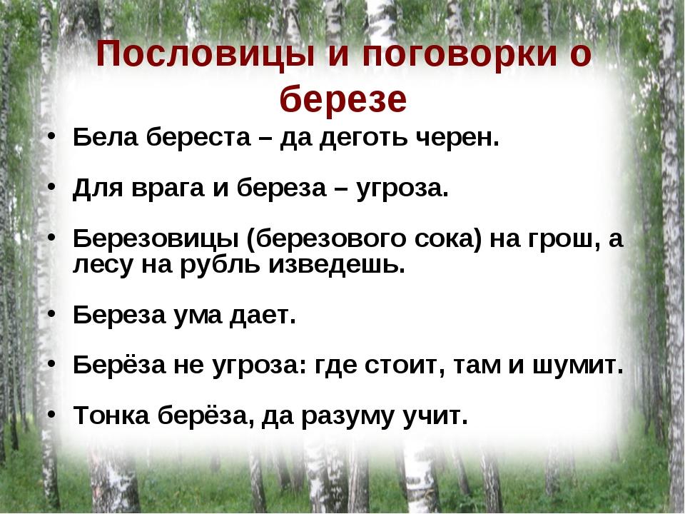 Пословицы о природе в картинках для школьников