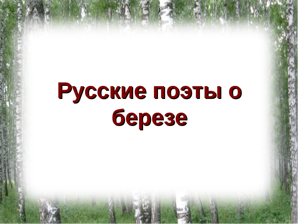 Русские поэты о березе