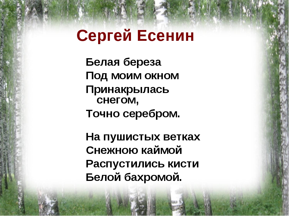 Поздравления на татарском с днем рождения словами
