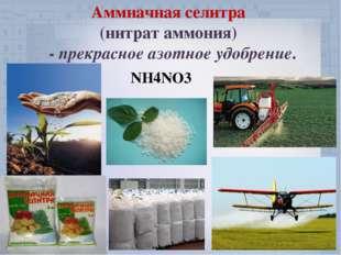 Аммиачная селитра (нитрат аммония) - прекрасное азотное удобрение. NH4NO3