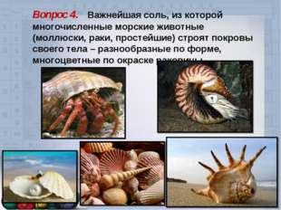 Вопрос 4. Важнейшая соль, из которой многочисленные морские животные (моллюск