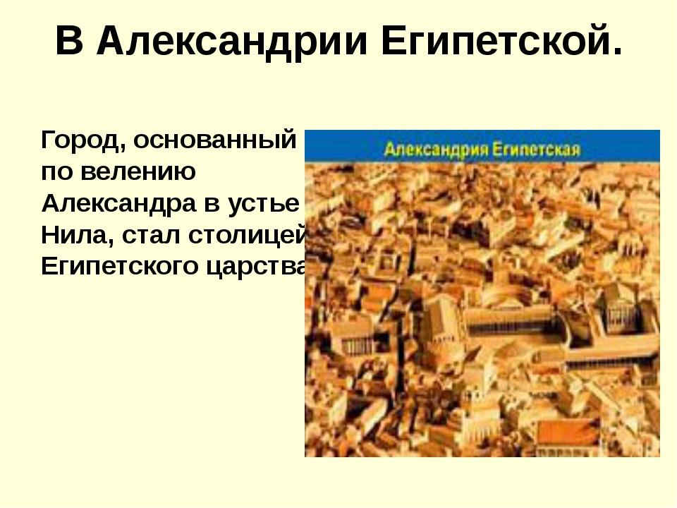 В Александрии Египетской. Город, основанный по велению Александра в устье Нил...