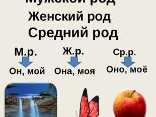 Род имён существительных Мужской род Женский род Средний род М.р. Ж.р. Ср.р.