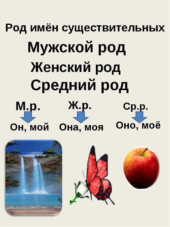 Род имён существительных Мужской род Женский род Средний род М.р. Ж.р. Ср.р....