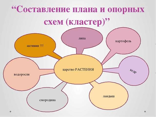 """""""Составление плана и опорных"""