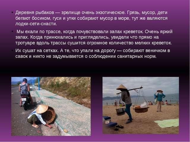 Деревня рыбаков — зрелище очень экзотическое. Грязь, мусор, дети бегают босик...