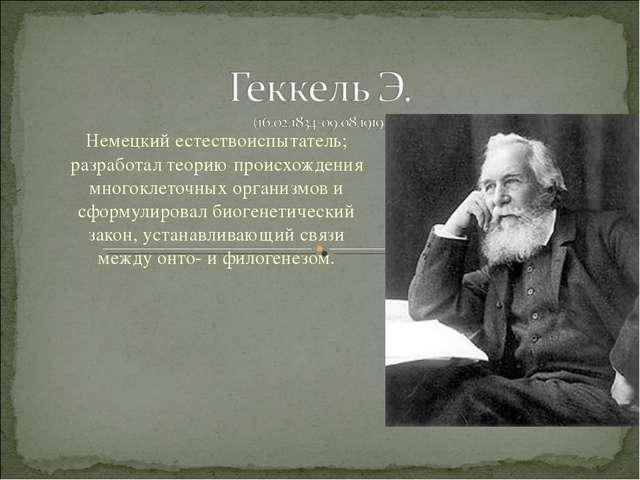 Немецкий естествоиспытатель; разработал теорию происхождения многоклеточных о...