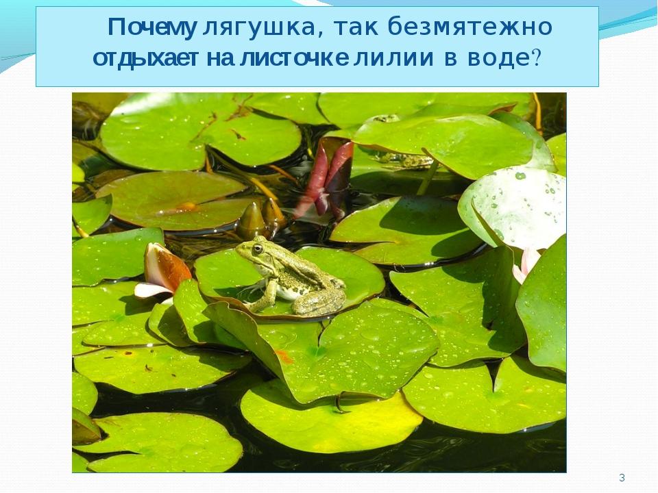 Почему лягушка, так безмятежно отдыхает на листочке лилии в воде? *