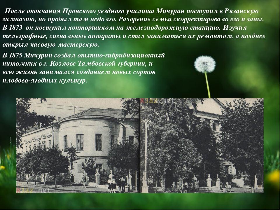 После окончания Пронского уездного училища Мичурин поступил в Рязанскую гимн...