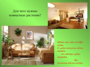 Для чего нужны комнатные растения? Цветы, как люди, на добро щедры, И, щедро