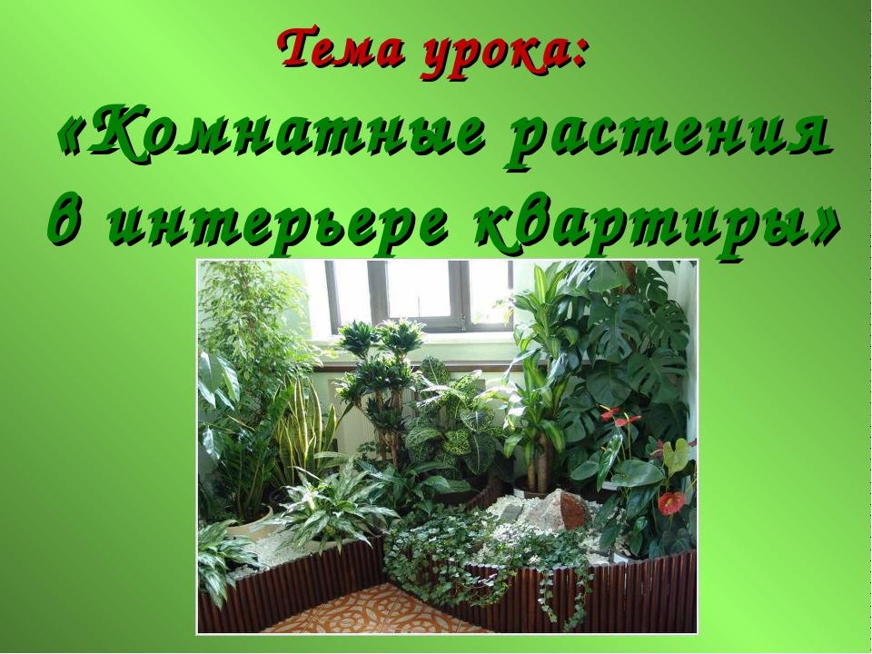 Тема урока: «Комнатные растения в интерьере квартиры»