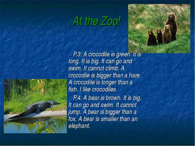 At the Zoo! P.3: A crocodile is green. It is long. It is big. It can go and s...