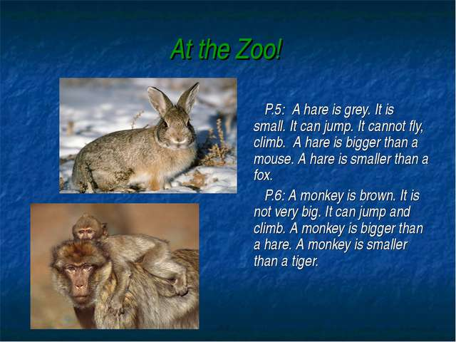 At the Zoo! P.5: A hare is grey. It is small. It can jump. It cannot fly, cli...