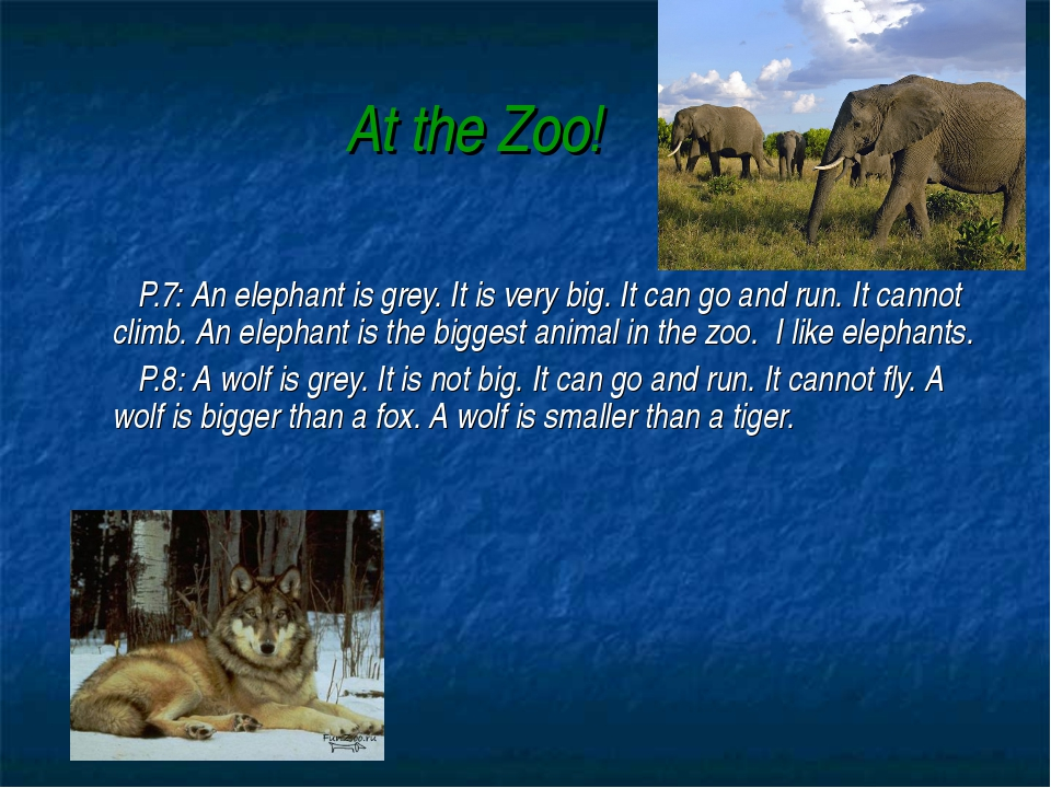 At the Zoo! P.7: An elephant is grey. It is very big. It can go and run. It c...