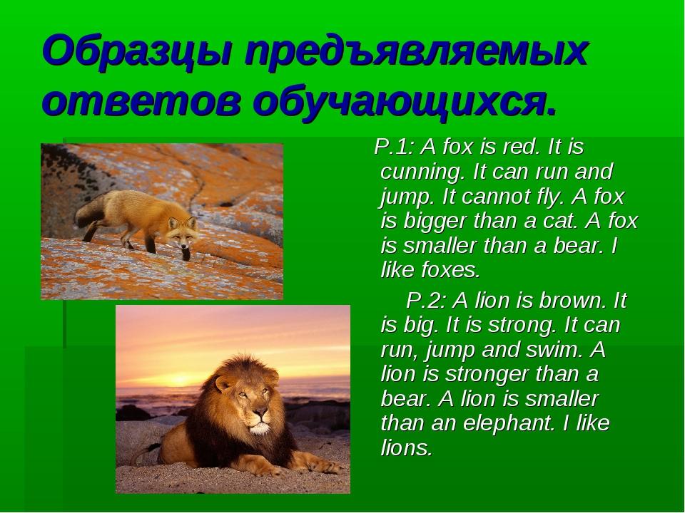 Образцы предъявляемых ответов обучающихся. P.1: A fox is red. It is cunning....