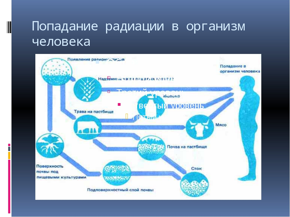 Попадание радиации в организм человека