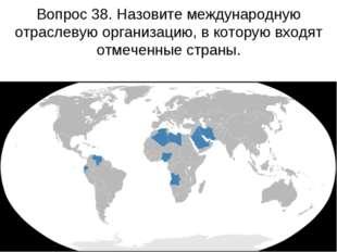 Вопрос 38. Назовите международную отраслевую организацию, в которую входят от
