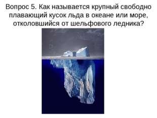 Вопрос 5. Как называется крупный свободно плавающий кусок льда в океане или м