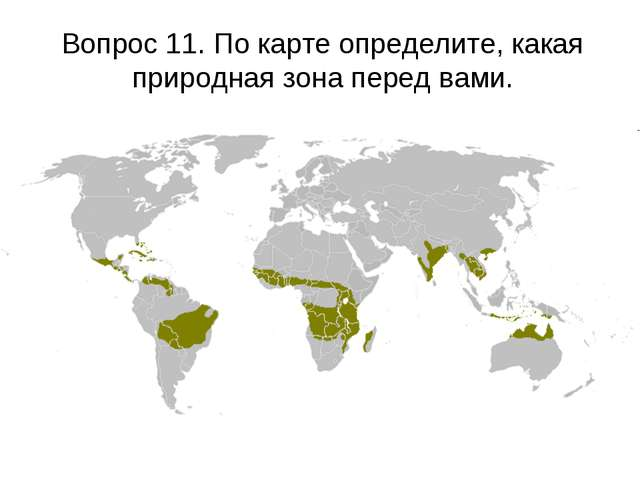 Вопрос 11. По карте определите, какая природная зона перед вами.